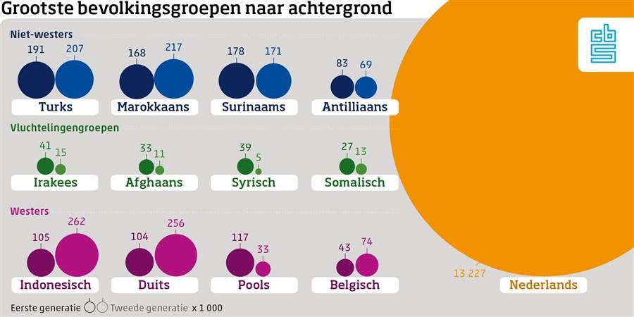 Infografic bevolkingsgroepen naar achtergrond