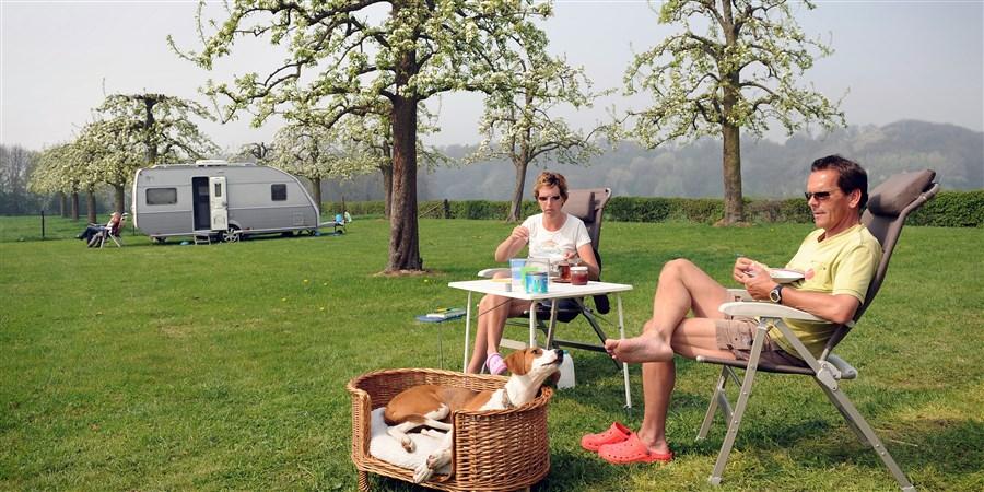 Stel zit in boomgaard met op achtergrond een caravan