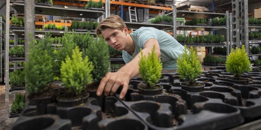 Jongen aan het werk bij een tuinbedrijf