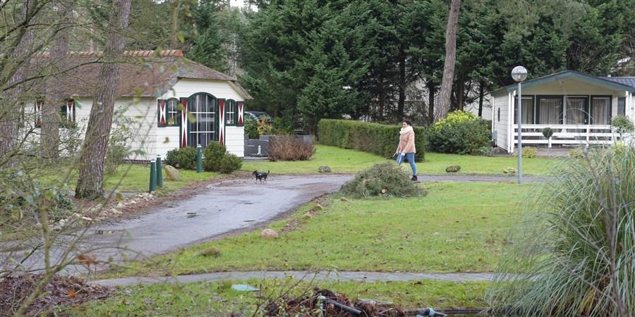 Vrouw laat hond uit tussen huisjes in een vakantiepark