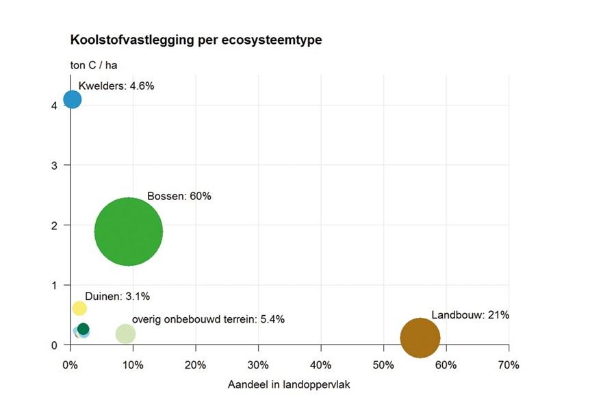 koolstofvastlegging per type ecosysteem
