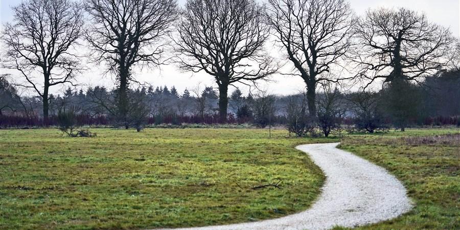 Bij het jachtslot mookerheide is sinds kort een natuurbegraafplaats ingericht. Staatsbosbeheer heeft enkele open plekken in het bos weggekapt en nu liggen er mensen begraven.