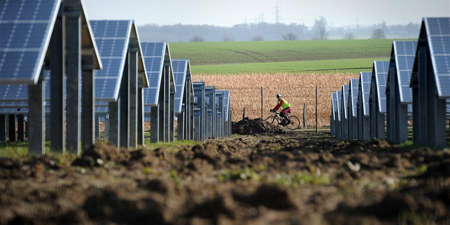 Wielrenner fiets langs een veld met zonnepanelen.