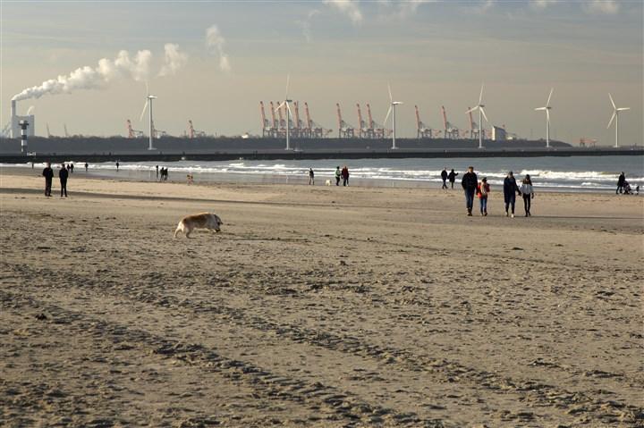 Strand met wandelaars en op de achtergrond windmolens en haveninstallaties