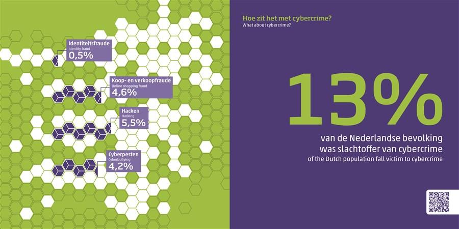 infographic over cybercrime in Nederland, uit publicatie Nederland in cijfers