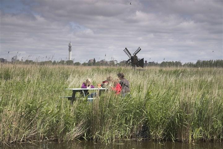 Gezin picknickt in veld met hoge grassen tegen achtergrond van molen