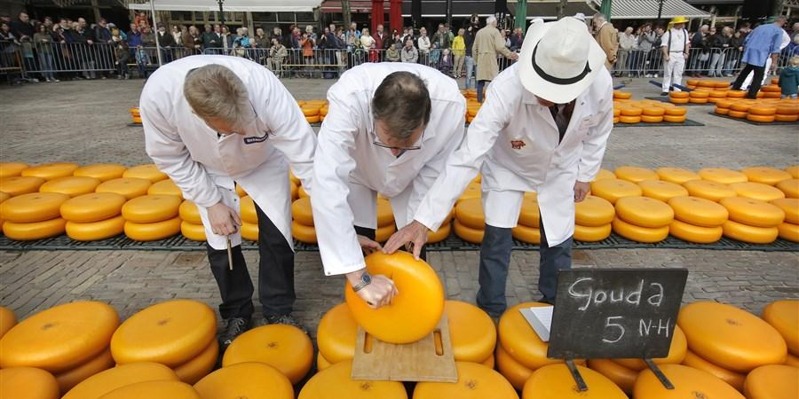 Kaaskeurmeesters keuren Goudse kaas op de kaasmarkt