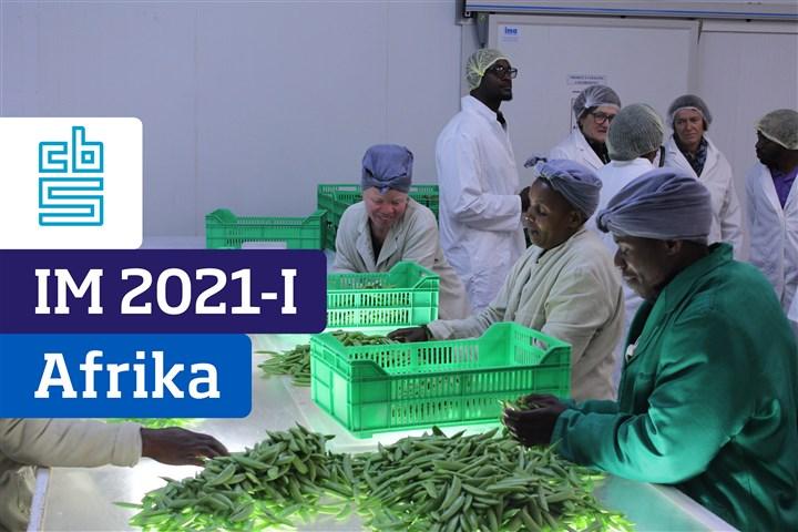 Voorpagina Internationaliseringsmonitor 2021 1e kwartaal - Afrika