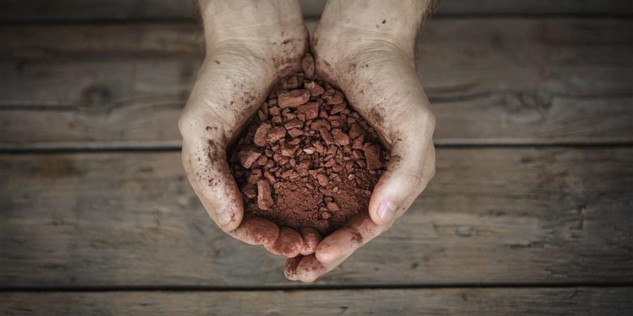 Iemand houdt een hand vol cacao vast