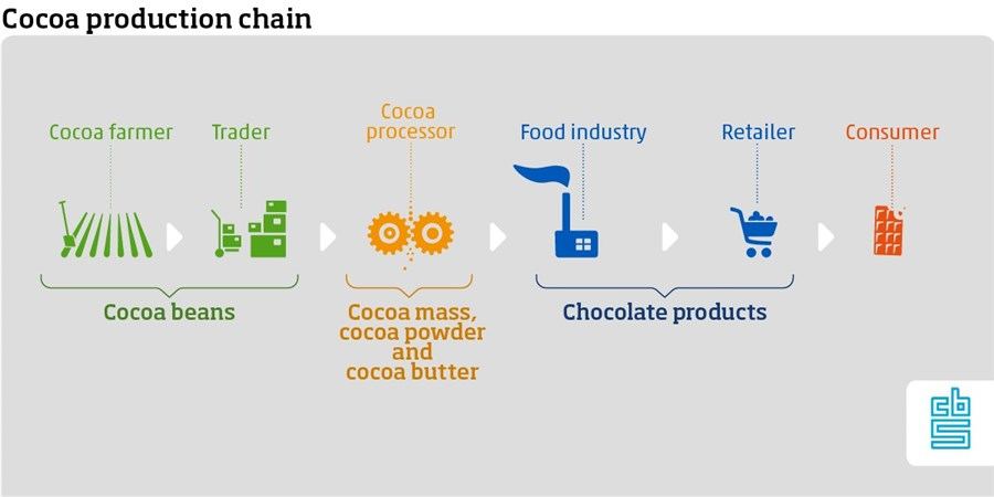 Infographic, Cocoa production chain