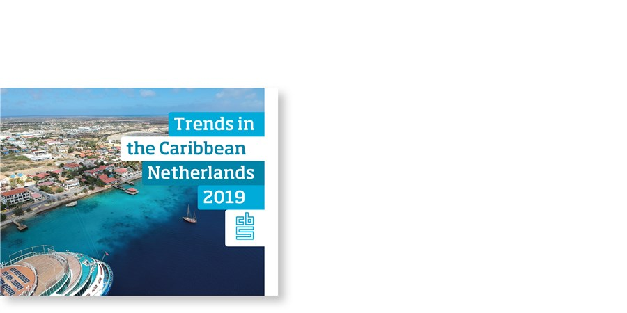 Cover Trends in the Caribbean Netherlands