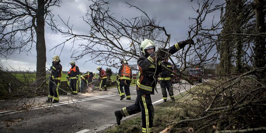 Brandweer verwijdert boomtakken die na een storm over een wegzijn gevallen