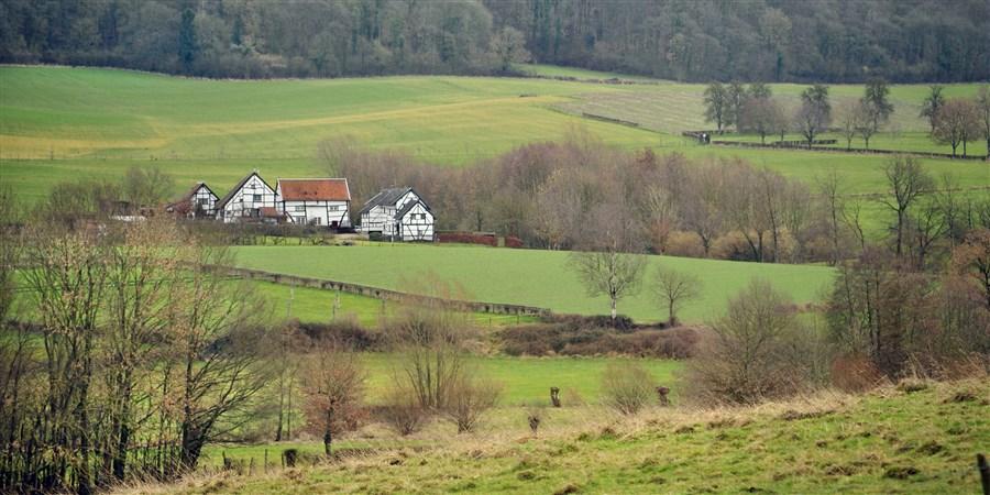 Landschap in Zuid Limburg.