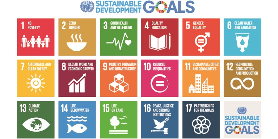 Infographic sustainable development goals VN