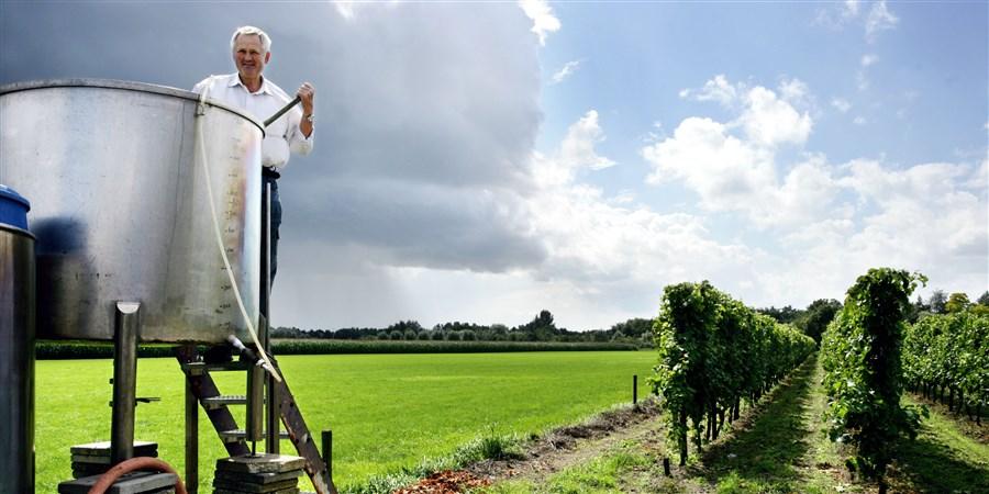Nederlandse wijnboer aanzet werk in zijn wijngaard